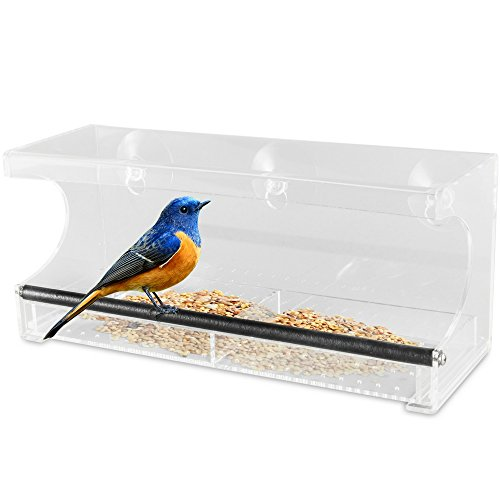Outdoor Prospects Window Bird Feeder U2013 Slide Out Tray With Drain Holes And  3 Extra Suction Cups U2013 100% See Through Clear Acrylic U2013 Easy Clean U2013 Strong  ...